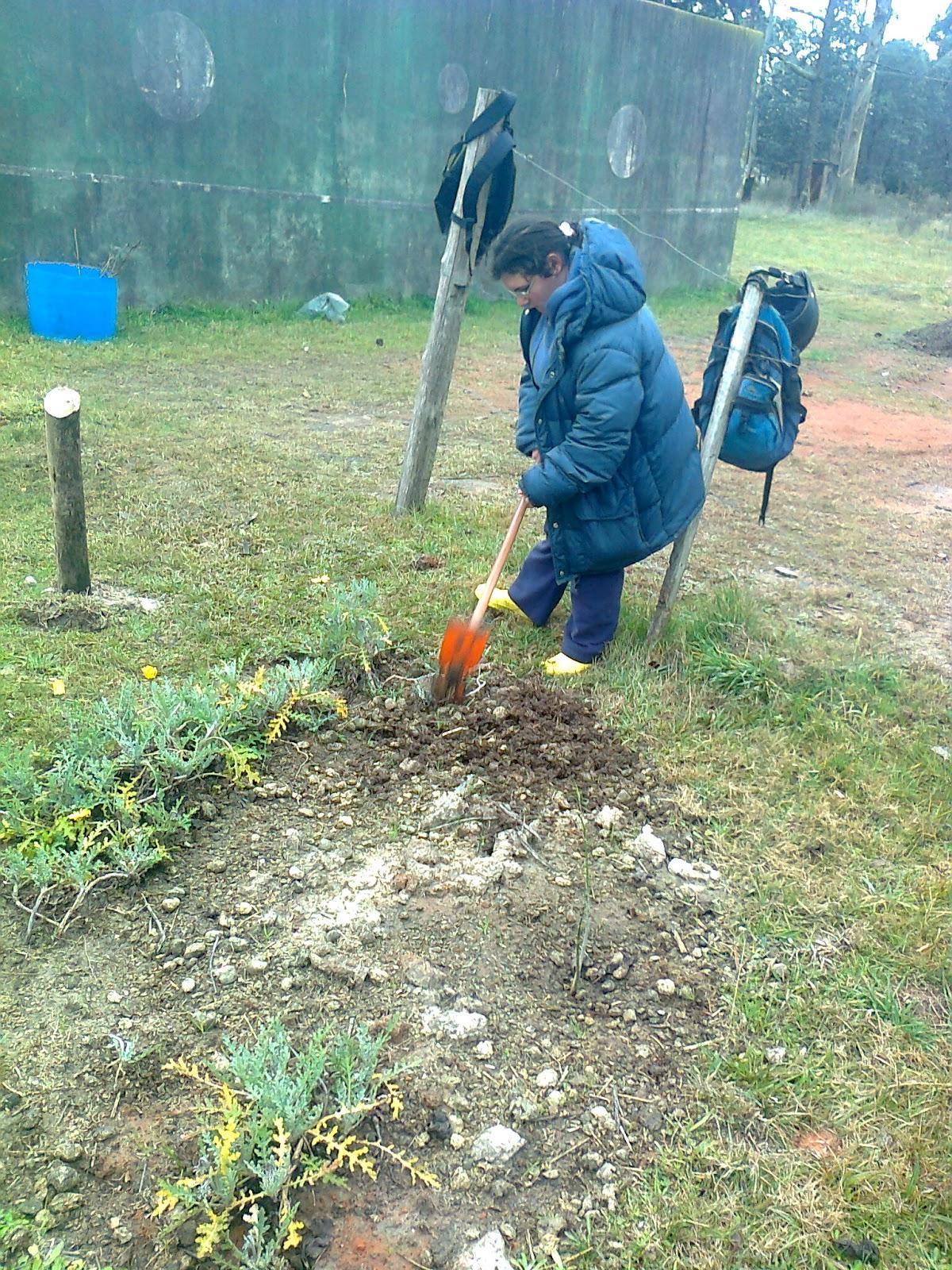 Curso jardiner a utu atl ntida for Curso jardineria