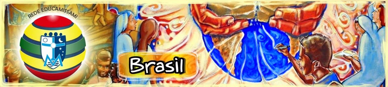 EDUCAMISSAMI NO BRASIL