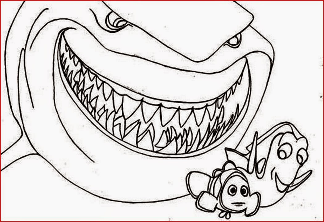 stunning coloring pages sharks printable gallery coloring page