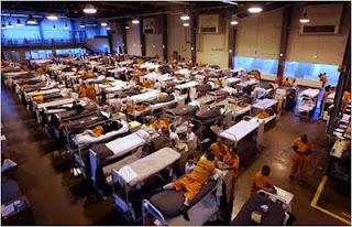 california prison overcrowding essay