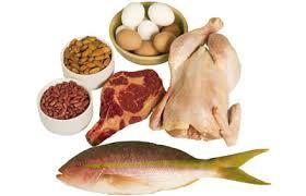 sumber dan fungsi protein