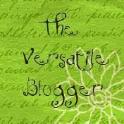 Versatile Blogger Award 2013