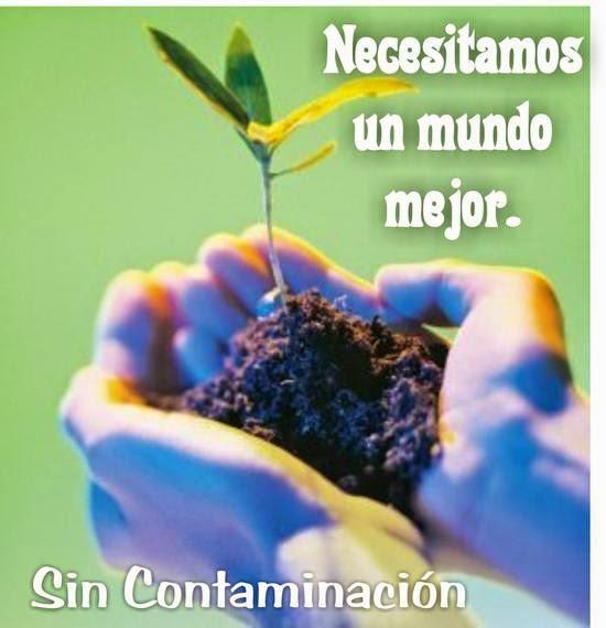 Mundo sin Contaminación
