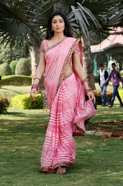 Cute Shreya Saran Images Collection
