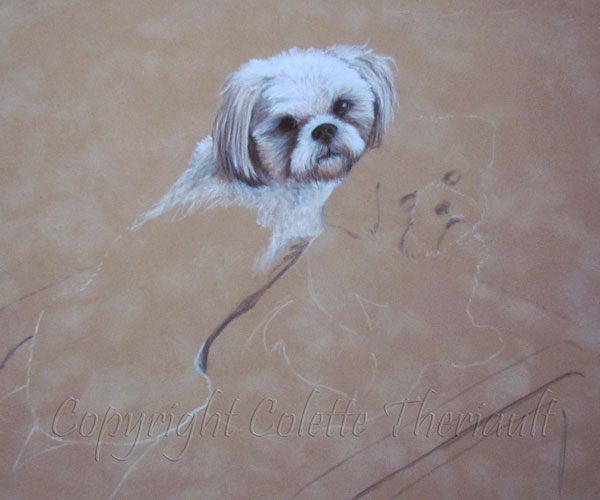 pet portrait commission on the easel by Animal Artist Colette Theriault