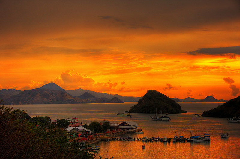 Komodo Island National Park Flores is an island located in the Nusa Tenggara islands. Komodo Island National Park Flores are a habitat of the dragons