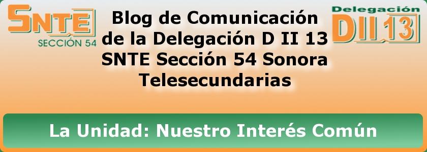 Delegación D II 13 SNTE 54