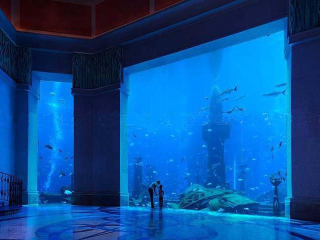 underwater hotel dubai 21 هل تخيلت أن تعيش تحت الماء ؟ فندق أتلانتس دبي