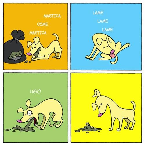 imagenes graciosas perro