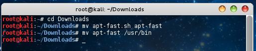 mv apt-fast /usr/bin