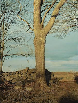 Trees On A Line by Trey Friedman Seen On www.coolpicturegallery.us