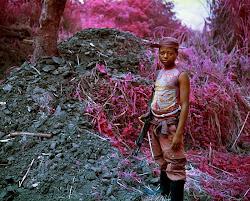 Pink Congo