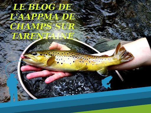 blog de l'aappma de champs sur tarentaine
