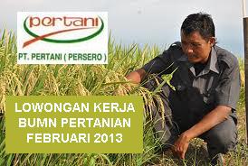 Lowongan Kerja BUMN 2013 : Pertani Persero Karir Masa Februari Bidang Teknik Tingkat D3 & S1