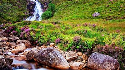 Sungai Dan Hutan Sumber Kehidupan Kita