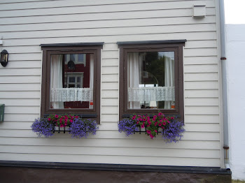Portes i finestres del fred. Alesund