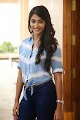 Pooja hegde gorgeous photo shoot-thumbnail-47
