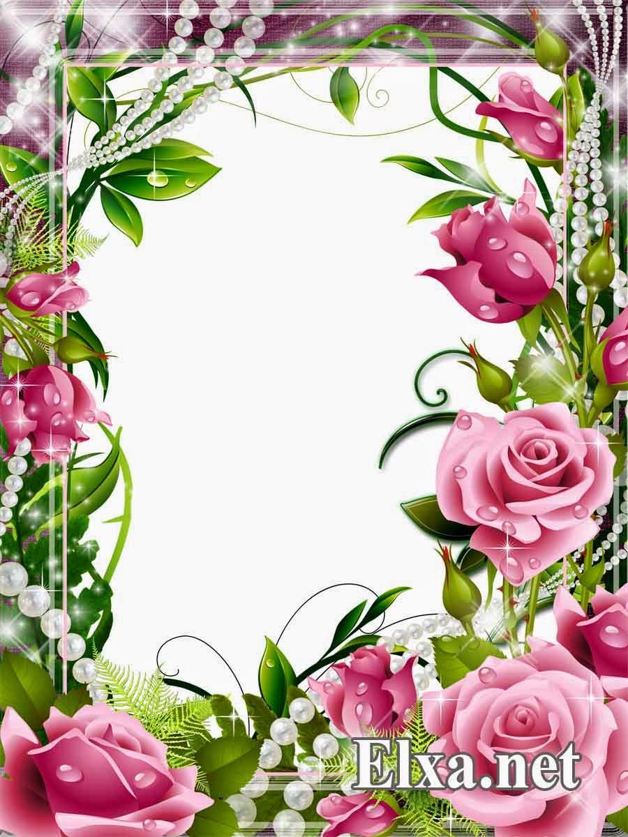 http://kingdom-frame.blogspot.com/
