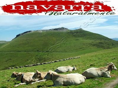 Comarca Urbasa Estella, en Navarra Naturalmente,