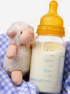 lactancia homebabysa home baby