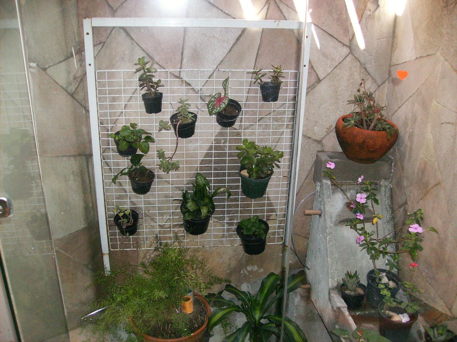 jardim de inverno dentro de casa muitos as conhece como área de luz