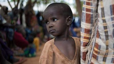 """""""Uma em cada sete pessoas no mundo vai para a cama com fome'', diz FAO"""
