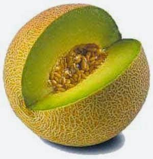 Khasiat Buah Melon untuk Kesehatan
