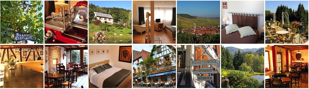Le Blog des Hotels - Restaurants de la Famille Frey à Kaysersberg & Orbey en Alsace