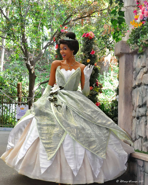 Princess Tiana Outfit: Live In Living Color: To Celebrate The Beauty Of People