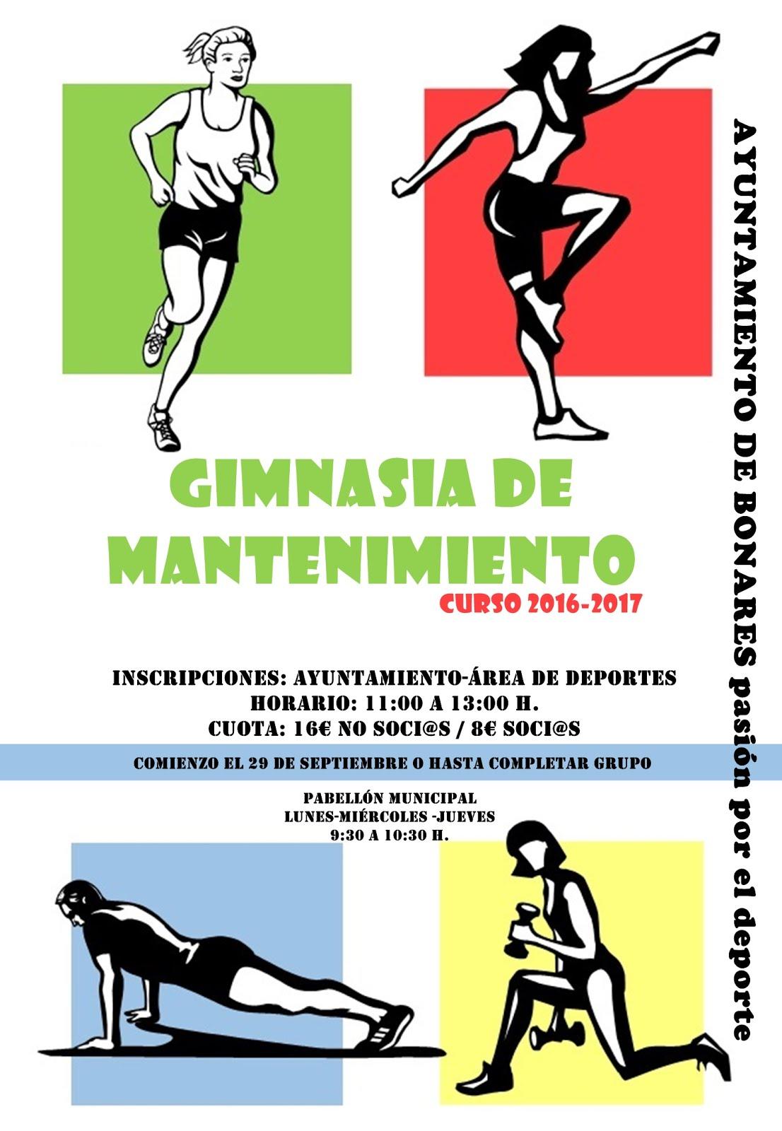 GIMNASÍA DE MANTENIMIENTO