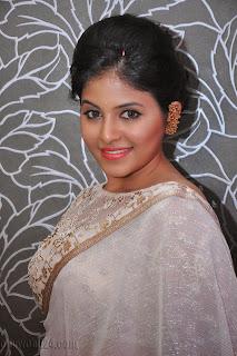 Anjali latest Glamorous pics in saree 014