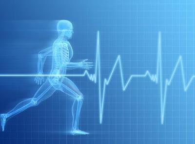 Health Care  - معلومات طبية لم تسمعها من قبل - طب وصحة - الدورة الدموية