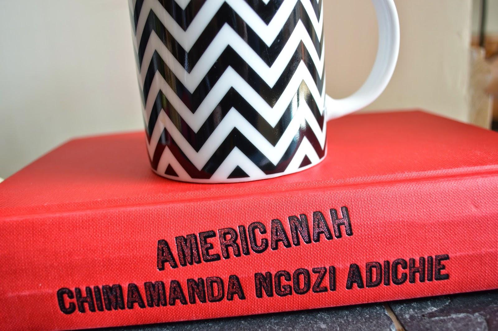 Americanah, Chimamanda Ngozi Adichie, review, book, Nigerian, literature, immigration, assimilation, Africa, America, love,