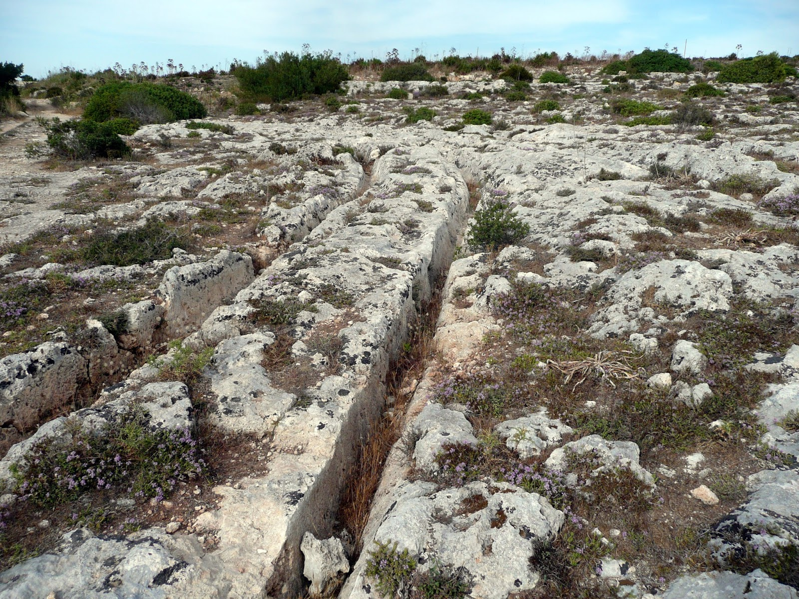 settlement patterns in the maltese islands A summary of the development of maltese  it is thought that man arrived on the islands around the  people are soon characterized by settlement patterns that.