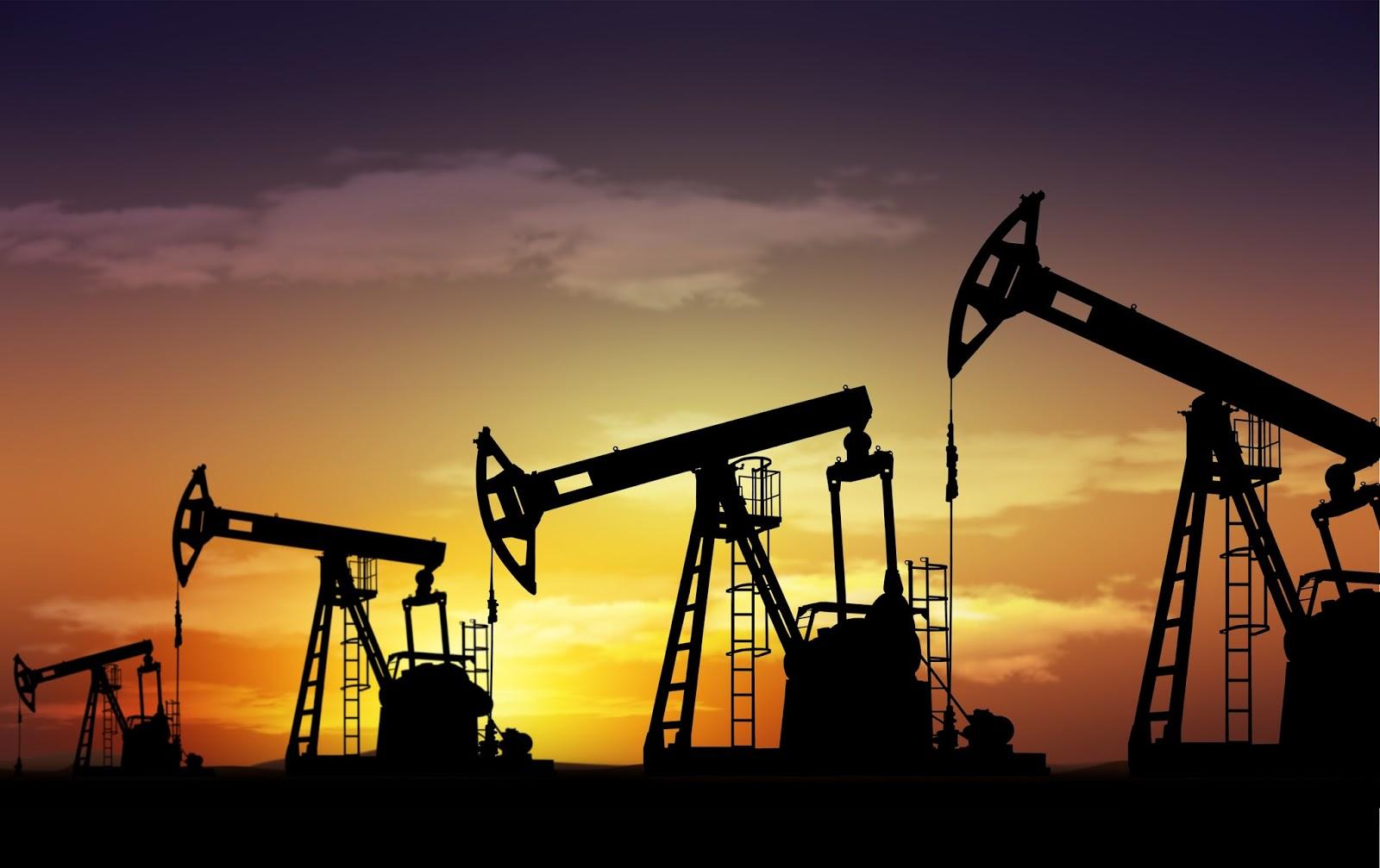 Petróleo e Hidrocarbonetos