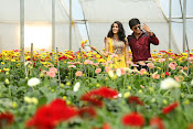 Bhale Bhale Magadivoi Movie photos-thumbnail-1
