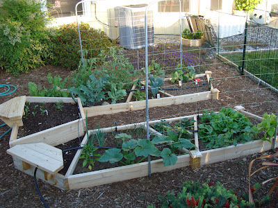 Raised bed garden with trellis