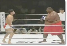 Luta de MMA