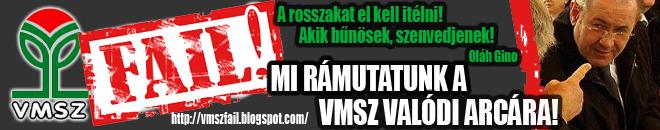 VMSZfail