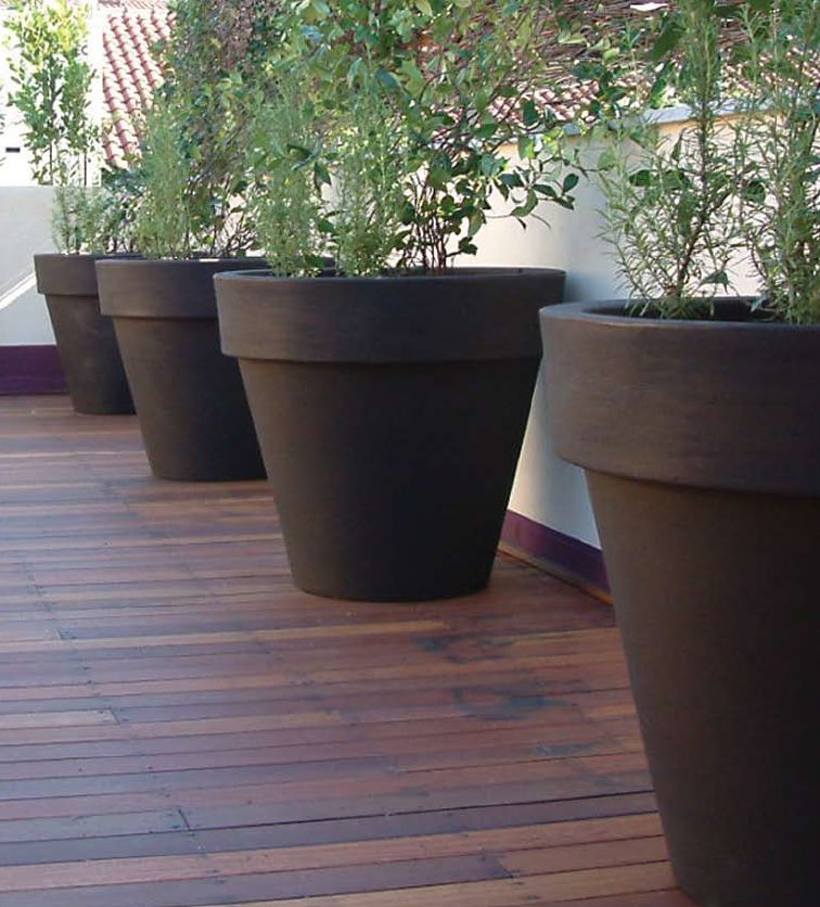 All About Plants And Planters Improving The Flower Pot