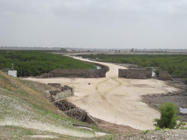 Caminos hacia los cultivos. Fadiouth, Senegal