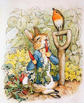 Peter rabbit wallpaper funny animal for Beatrix potter mural