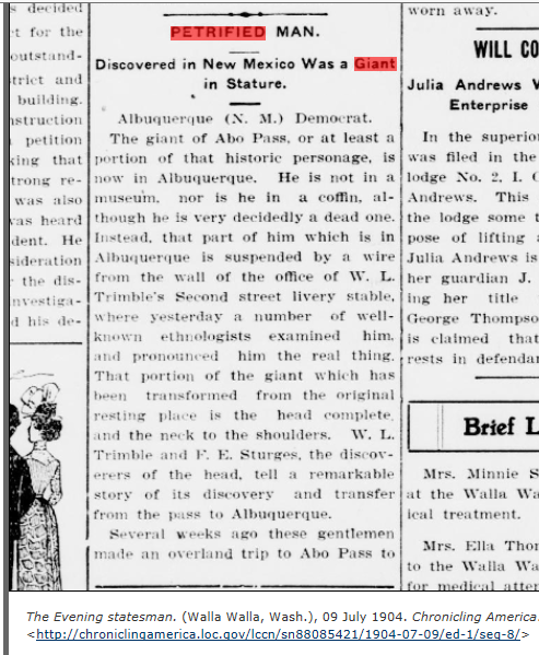 1904.07.09 - The Evening Statesman