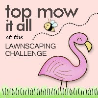 I love a challenge!