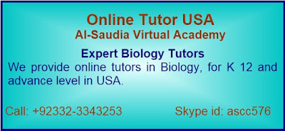 Online Biology Tutor USA