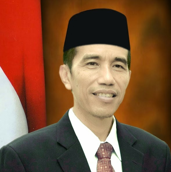 Best photo of Indonesia's President Joko Uidodo