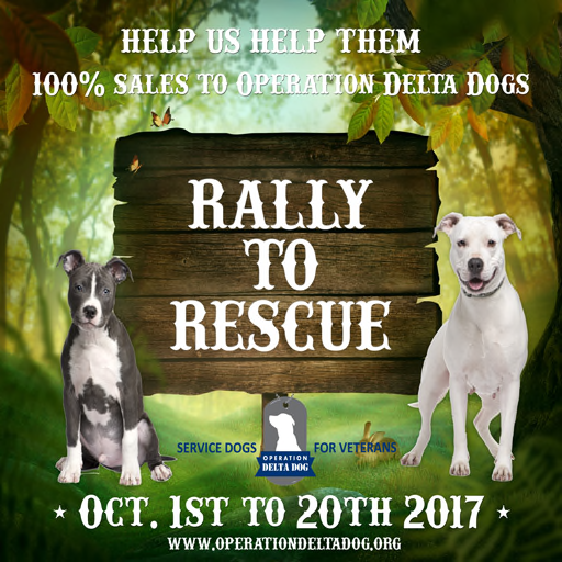 Rally 2 Rescue