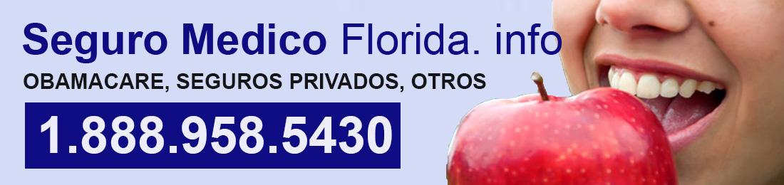 Cuidado de Salud. Seguro Medico Florida Información: Miami, Orlando, Tampa, Jacksonville Fl