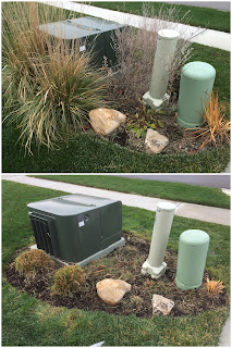 hide utility box landscape