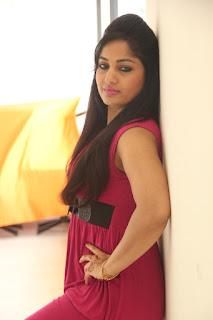 Madhavi Latha New glam pics 012.jpg